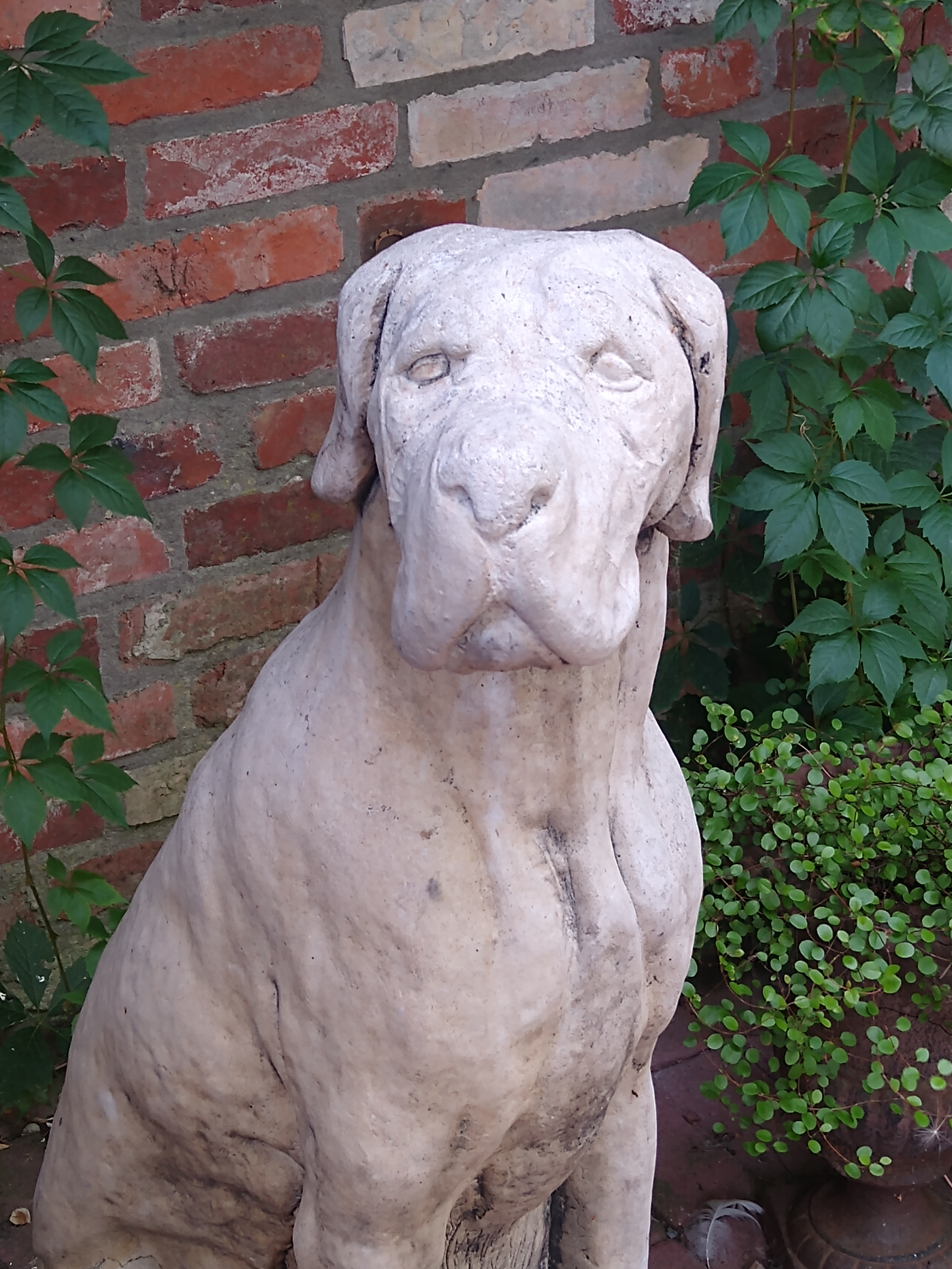 Die Skulptur eines grimmig dreinschauenden großen Hundes aus Stein